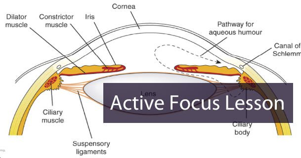 How To: Finding Active Focus